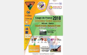 VB / Coupe de France